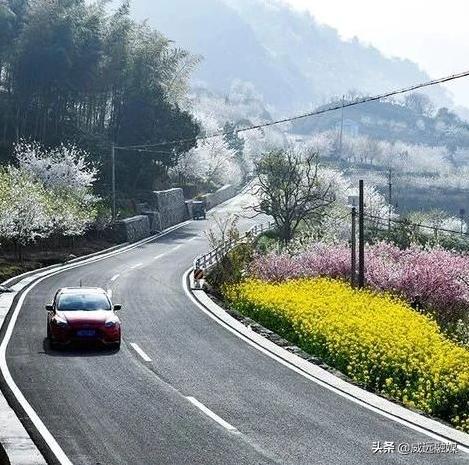 威远县镇西镇的新照片