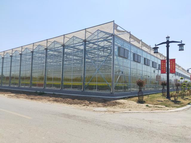 很火的现代设施农业大棚种植模式参考,农业设施现代化
