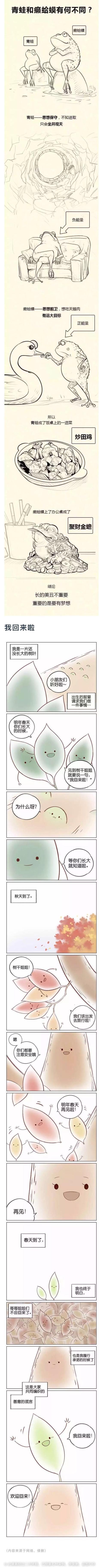 癞蛤蟆与青蛙的区别_韩晓慧_新浪博客