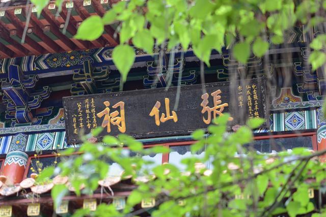 来福泉古城旅游必去福泉山、三丰主题文化馆、洒金谷,这三个地方