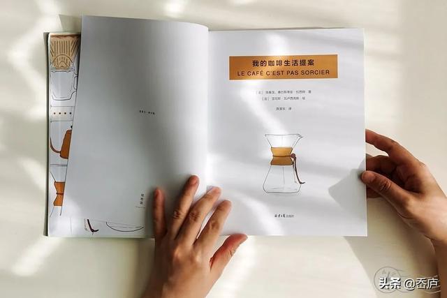 一组关于咖啡的生长过程手绘插画~ - 原创作品 - 站酷(ZCOOL)