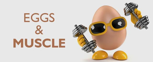 每天究竟吃几个鸡蛋才算安全?