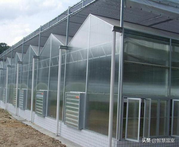 连栋PC板温室大棚设计方案