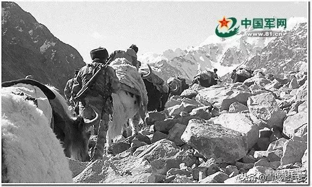 西藏军区4600米高海拔战备拉动 提升部队作战力