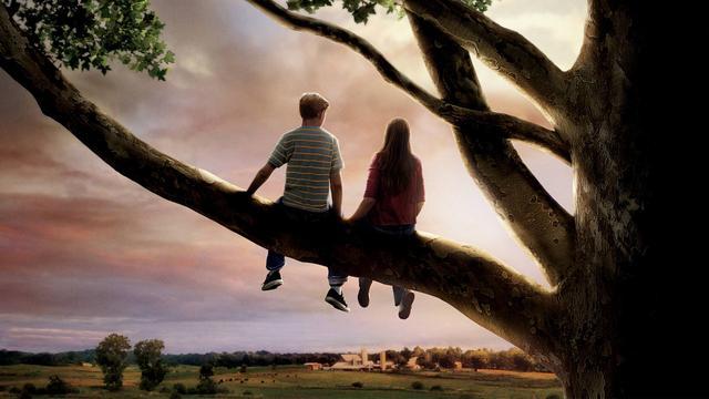 《怦然心动》:不只是关于初恋和懵懂