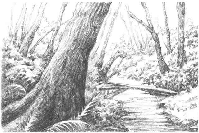海上风景素描画初学者