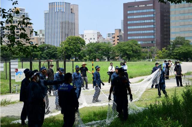 猪突猛进 日本警察出动大抓捕(图片合集)