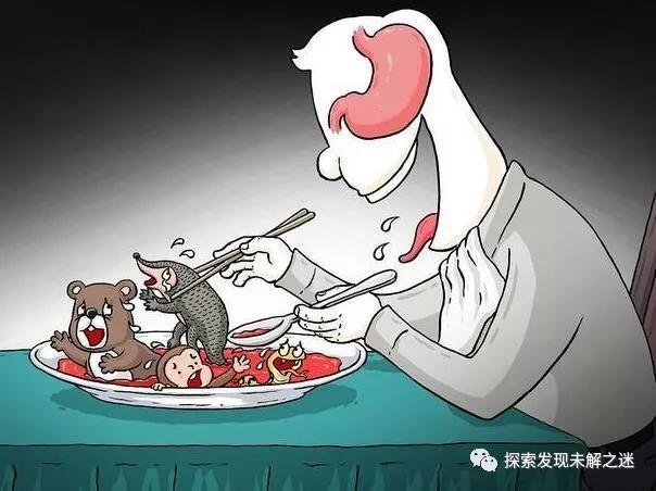 人类不能吃的十大野味排行,蝙蝠第一,最后一个不少人吃过