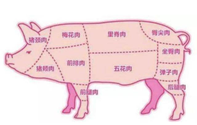 食客:从头到尾告诉你,如何正确的吃一头猪