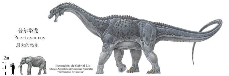 世界最大恐龙排行榜,易碎双腔龙体重可达220吨-第2张图片-IT新视野