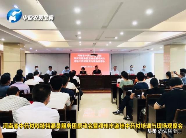 """""""河南省科技特派员""""助力邓州市中药材发展"""