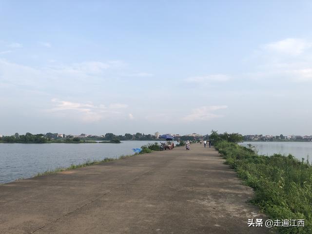 赣江在此不叫江而叫河,南门河有泰和人回不去的美好记忆