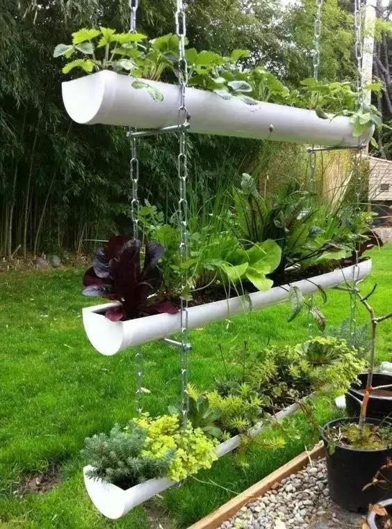 立个PVC管,1㎡都不用,这样种菜养花,美翻了!