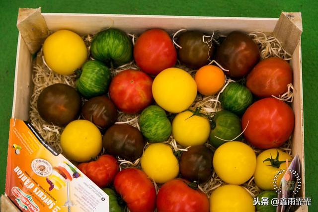 各种水果的名字和图片- 豆丁网