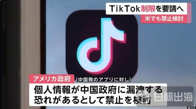 回应美国?日本官员建议限制使用TikTok等中国App