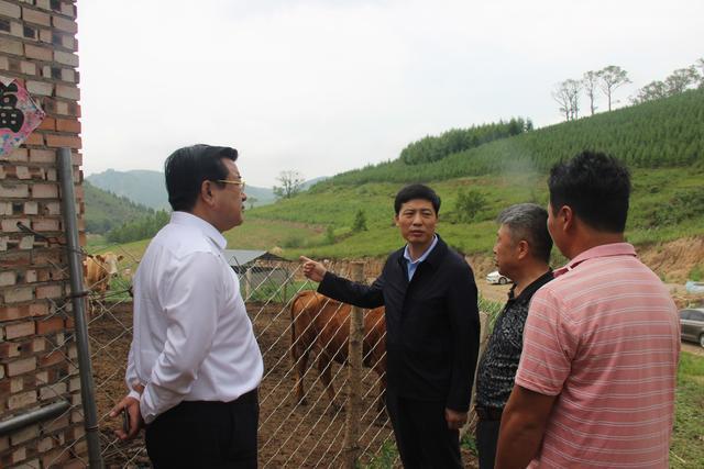 杨燕伟在省信访局帮扶村走访调研时强调 巩固拓展脱贫成果 打好打赢脱贫攻坚战