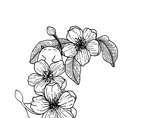简单的花儿简笔画 带详细步骤 教小朋友画画