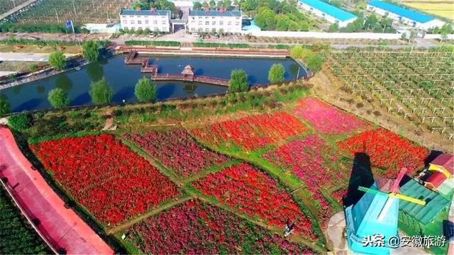 安徽·庐江·金孔雀温泉