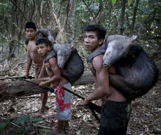 巴西亚马逊土著女人照