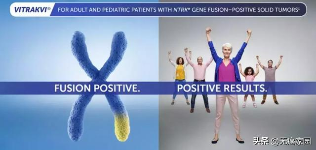基因突變類型