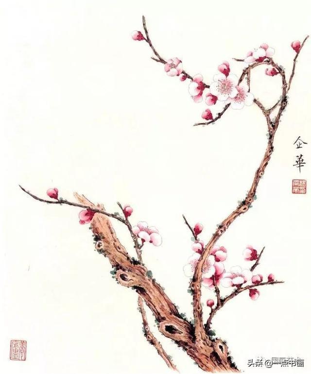 图文教程——工笔梅花《香闻流水处》画法示范