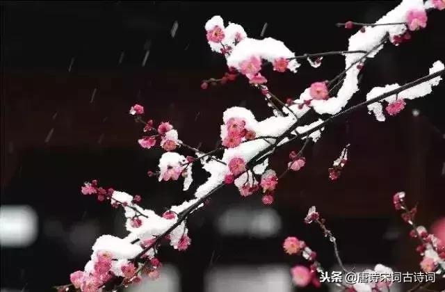 关于小雪节气的古诗词 描写小雪的优美诗句大全 - 万年历