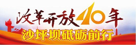 重庆南开中学校徽