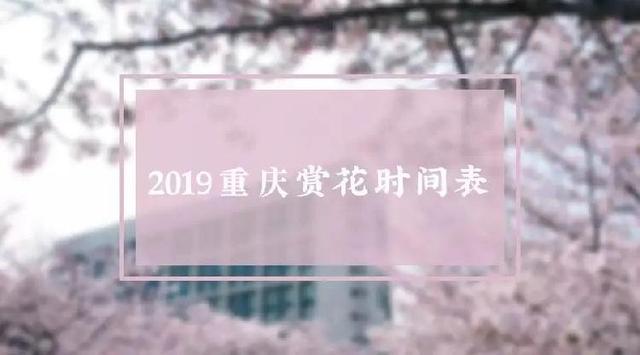 重庆附近哪里可以看花?2019重庆周边赏花最佳地点推荐_同业采购