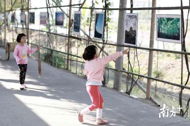 """来这里看南沙发展史!南沙东涌绿道长廊成时代发展""""时光廊"""""""