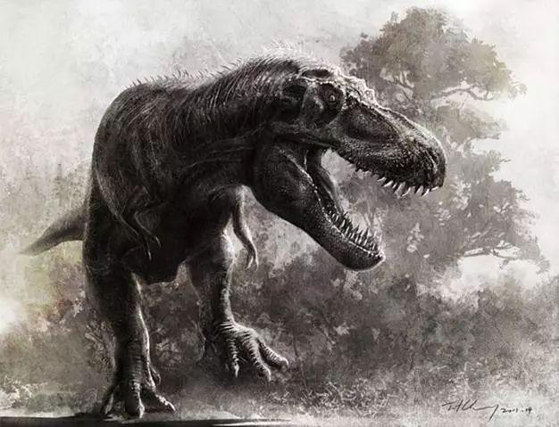 中国最大的食肉恐龙来自山东!