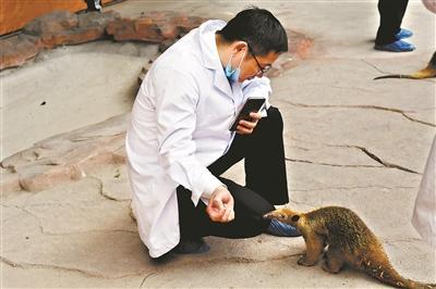 东莞香市动物园怎么样