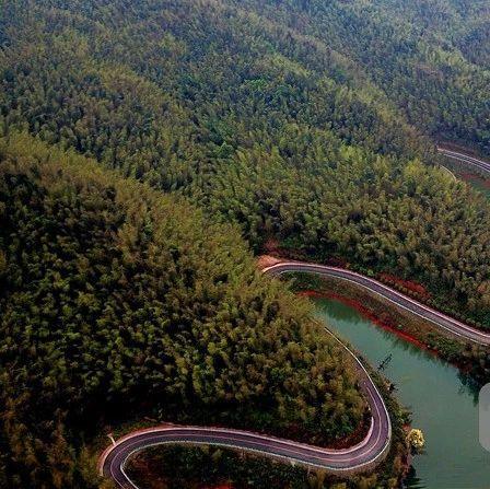 赤水竹海国家森林公园