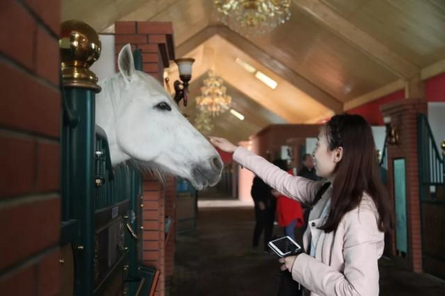 中国各省水彩地图 内蒙古 好想去大草原骑马奔驰啊!!! - 堆糖...