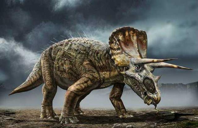 恐龙的种类图片大全-第4张图片-IT新视野