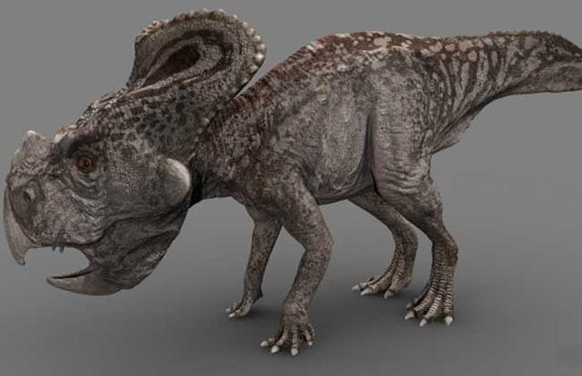 恐龙的种类图片大全-第5张图片-IT新视野