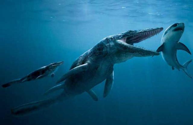 恐龙的种类图片大全-第11张图片-IT新视野