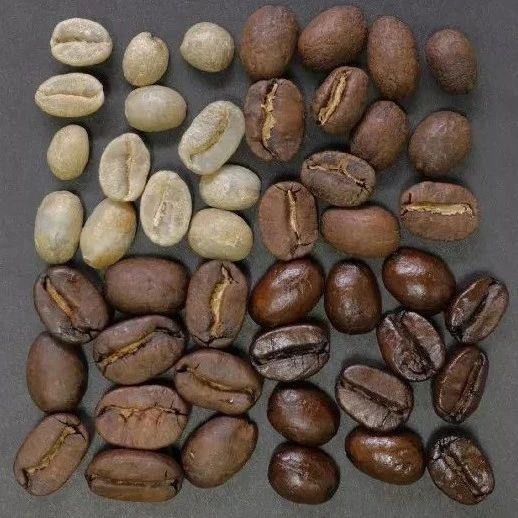 咖啡烘焙真的很难入门?先来了解烘豆的基础观念