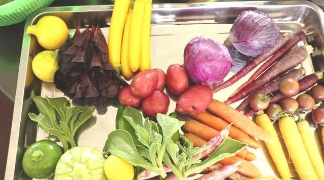 有机蔬菜不打农药,全年100多个品种!价格是普通蔬菜的3到6倍!