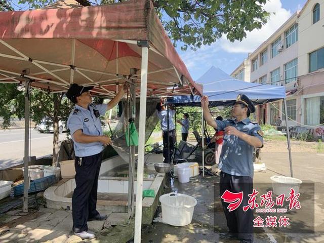 """取締非法""""大篷車""""導盲犬圖片浙江新聞"""