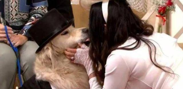 女子6年约会220次都失败,决定放弃人类,和狗狗成婚