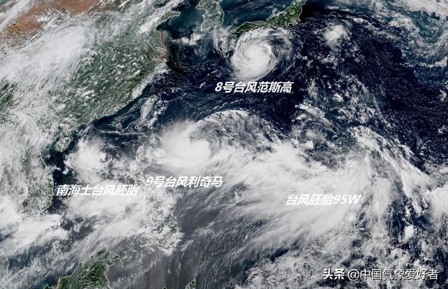 鹦鹉台风线路图