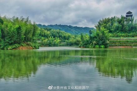 赤水竹海国家森林公园景色非常美丽,是个旅游的好地方!