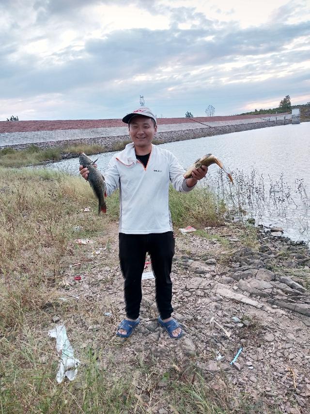 青、鲤鱼打桩的三种解决方法_久德渔具_新浪博客