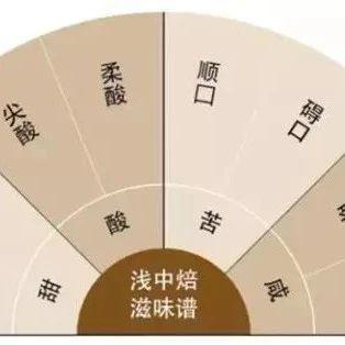 咖啡知识 | 浅中烘焙四大风味谱详解