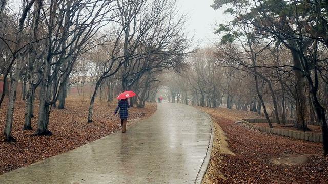 南昌进贤今日的天气,适合吃这些食物,可惜很多人不知道