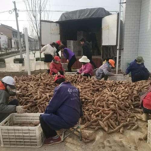 陕西省宝鸡市凤翔县虢王镇万丰村地名介绍_博雅地名网