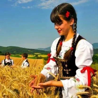 屡上热搜的塞尔维亚,是这样一个宝藏国家
