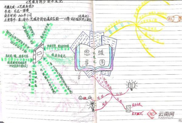 大学组织结构框架图