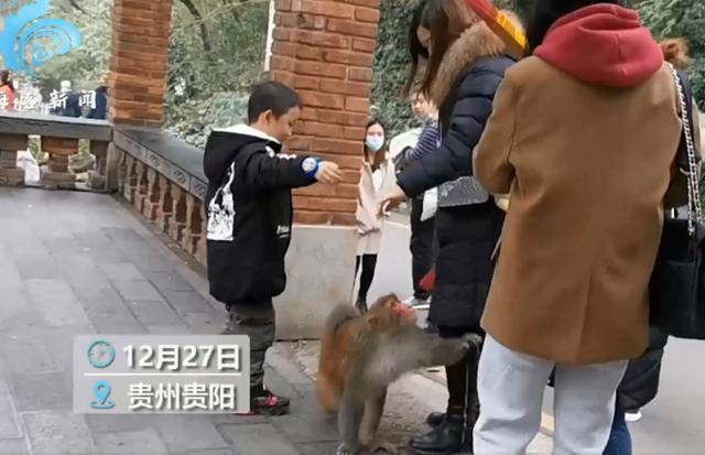 贵阳黔灵山公园小姐