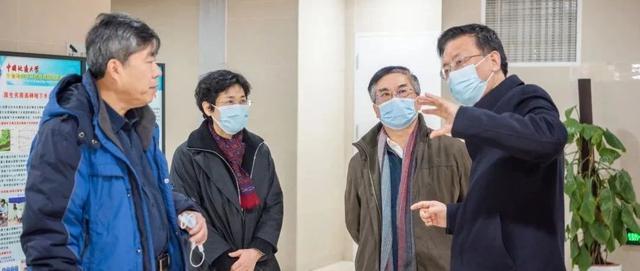 武汉地质大学化石林